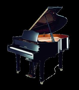 Disklavier Piano